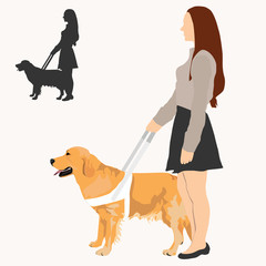 Woman holding guide dog on harness and their silhouette. Assistance dog with white harness. Golden retriever and blind woman on white background.