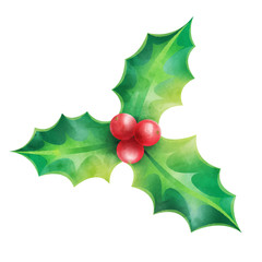 Christmas ornament, holly vector illustration isolated on white background for design elements