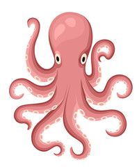 Red octopus cartoon character. Cute octopus flat vector isolated on white background. Aquatic fauna. Octopus icon. Animal illustration for zoo ad, nature concept, children book illustrating.
