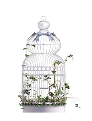 Vintage Bird cage isolated on white. 3D Render.