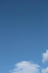 paracadutsti