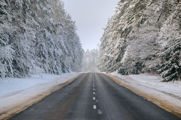 Winter forest and Auto road