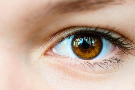Female brown eyes