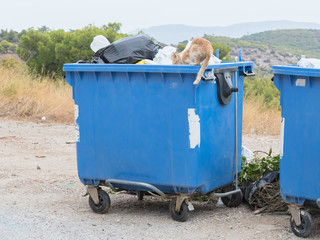 Garbage container in Greece