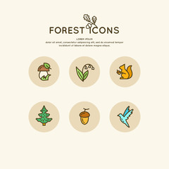 The set of linear forest of icons and illustrations. Animals and plants