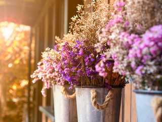 Natural dried flower in purple, pink and white color in a pot with sunset background, vintage style