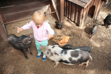Cute little girl with animals in petting zoo