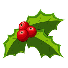Christmas holly berry leaves icon. Vector red mistletoe icon isolated on a white background.