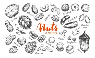 Nuts and seeds collection.1