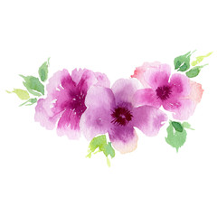 Wildflower eustoma flower in a watercolor style isolated. Full name of the plant: eustoma, marigolds, tagetes. Aquarelle wild flower for background, texture, wrapper pattern, frame or border.
