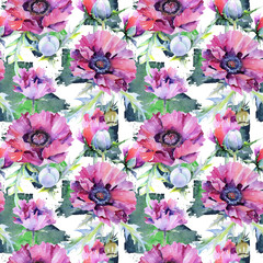 Wildflower poppy flower pattern in a watercolor style. Full name of the plant: poppy, papaver, opium. Aquarelle wild flower for background, texture, wrapper pattern, frame or border.