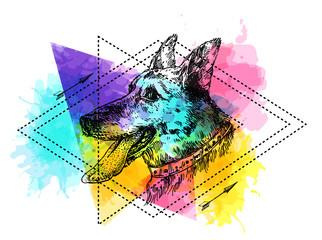 Hand drawn vector illustration dog.