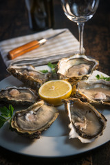 Fresh oysters white plate  and lemon on wooden desk