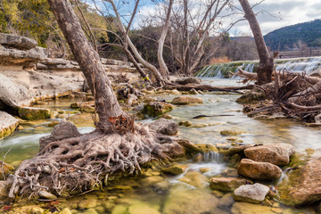 Crystal clear flows through the Greenbelt in Austin, Texas