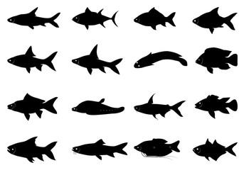 silhouette fish shape vector design