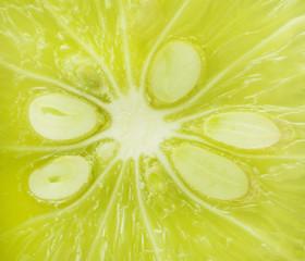 Fresh  green lemon slice