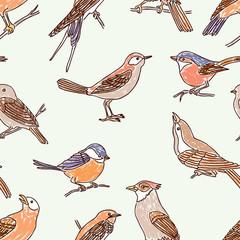 pattern of the drawn wild birds