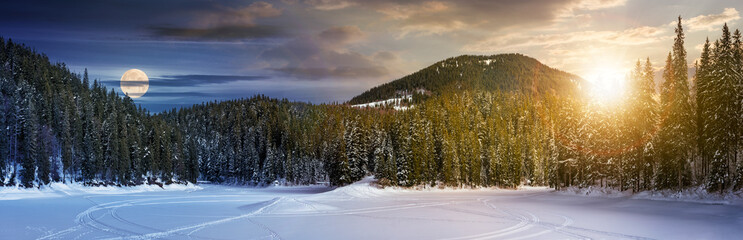 day and night concept of winter spruce forest. location lake Synevyr, Ukraine, frozen in winter. beautiful panorama of in Carpathian nature