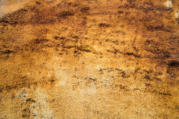 Natural yellow sand texture