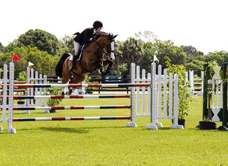 A horse and rider jumping over an obstacle.