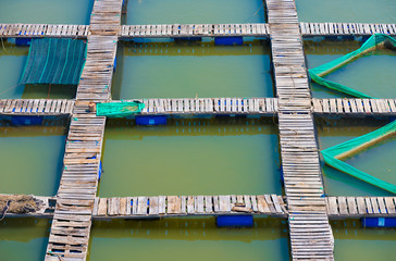 footbridges at a fish breeding farm