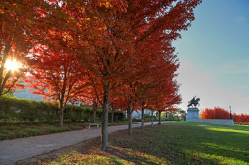 November 3, 2017 - St. Louis, Missouri - Fall foliage around the Apotheosis of St. Louis statue of King Louis IX of France in Forest Park, St. Louis, Missouri.
