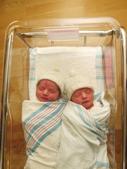 Baby Twins