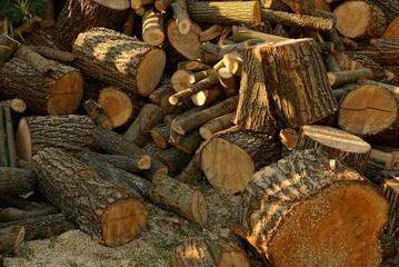 текстура из кучи коричневых дров и брёвен во дворе