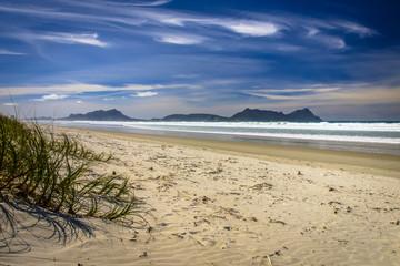 Wall Mural - White Sandy Beach With Beautiful Blue Sky at Waipu,New Zealand