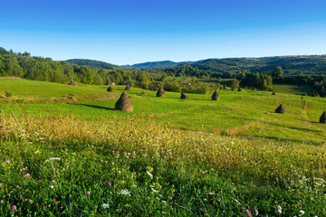 Image of Karpaty mountains in Maramures