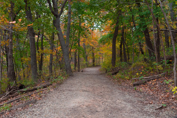 Beautiful colorful parks in Illinois country side in autumn