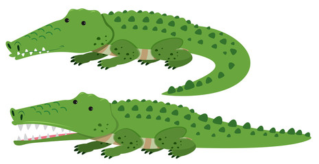 Cute crocodiles on white background