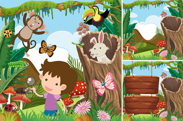 Three forest scenes with boy and animals