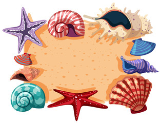 Border template with shells and starfish