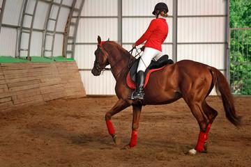 Jockey riding a horse gait