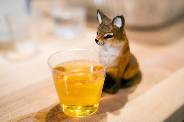 Shot with a fox