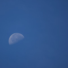 The Moon in the Morning time with blue sky background