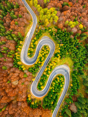 Aerial view of curvy road crossing autumn forest