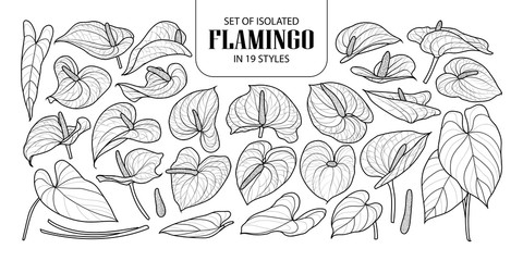 Set of isolated Flamingo in 19 styles. Cute hand drawn flower vector illustration in black outline and white plane.