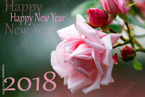 symbol from number 2018 on of pink rose background happy new year 2018