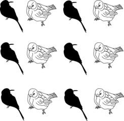 vector birds pattern on white background