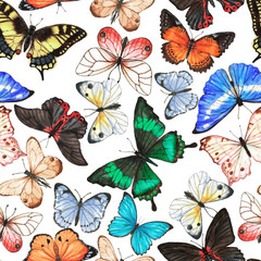 Hand drawn watercolor seamless pattern with colorful tropical butterflies on the white background.