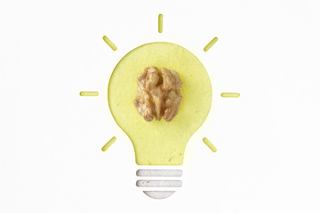 Walnut is healthy for brain - Conceptual photography idea