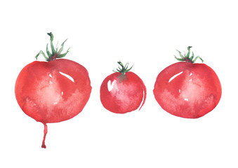 Watercolor red tomatoes on a white background. Art illustration, illustration, logo. Watercolor painting.