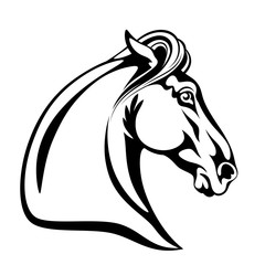 Mustang head on a white background