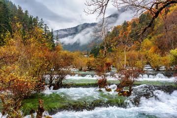 Amazing view of the Bonsai Shoals, Jiuzhai Valley National Park
