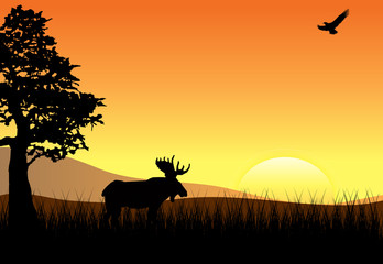Sunset with Elk and Eagle