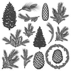Vintage Coniferous Tree Elements Set