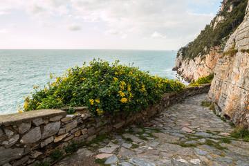 La scogliera a Portovenere, La Spezia, Golfo dei Poeti, Liguria, Italia
