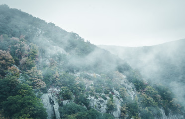 Mountainside with tree foliage and mist. Misty moutain range. Clouds over mountain. Abstract nature background.